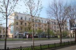 Продам помещение Муравьёва-Амурского 44. Улица Муравьева-Амурского 44, р-н Центральный, 104 кв.м.