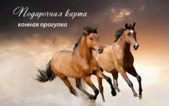 Сертификат на романтическую конную прогулку. Доставка.