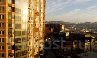 3-комнатная, улица Шкипера Гека 15. Центр, агентство, 60 кв.м. Вид из окна днём