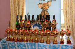 """Международная выставка кошек WCF 1 апреля КЛК """"ЭльГранд"""" г. Уссурийск"""