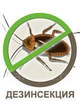 Уничтожение насекомых, Тараканы, Клопы, Клещи, Дезинсекция, Клининг!
