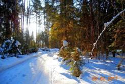 Земельный массив 7 750 га из них 2750 га леса в собственности!. 72 500 000 кв.м., собственность, электричество, от агентства недвижимости (посредник)