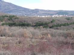 Продам свой зем. участок ИЖС 7 соток в с. Изобильное Алуштинский р-он. 700 кв.м., собственность, от частного лица (собственник)