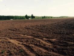Продаются земельные участки сельскохозяйственного назначения. 6 487кв.м., собственность. Фото участка