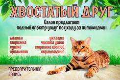 Стрижка котов и кошек