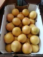 Грейпфрут.