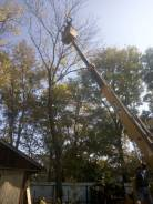 Вырубка, санитарная и формовочная обрезка деревьев