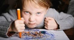 Агрессивный ребенок. что делать? тренинг 19 марта