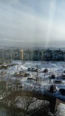 1-комнатная, улица Карбышева 4. 10км , агентство, 30 кв.м. Вид из окна днём