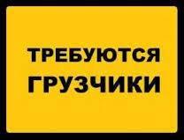 Грузчик. Грузчик по заявкам (подработка) . Иванов И. И. По городу