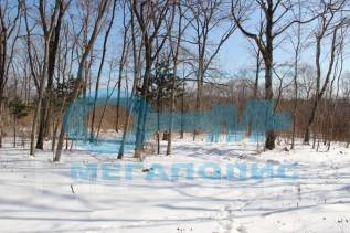 Продам хороший земельный участок !. 1 629 кв.м., собственность, от агентства недвижимости (посредник)
