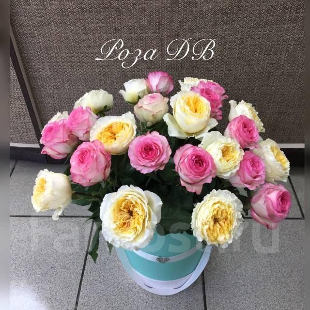 Доставка цветов в артеме роза дв, букеты цветов фото реальные