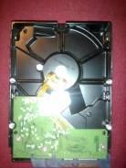 Жесткие диски. 1 000 Гб, интерфейс Обычный