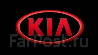 Запчасти в наличии и под заказ на KIA любой модели и любого года