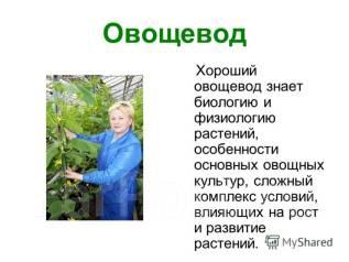 Овощевод- заведующий хозяйством. ООО. Бизнес Букет. . Улица Шестая 8