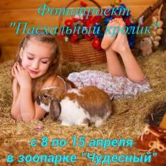 """Фотоссесия """"Пасхальный кролик"""""""