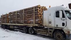 Услуги по лесозаготовке комплексом (форвардер+харвестер)