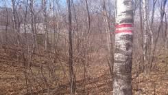 Участок в элитном районе пригорода Владивостока (Лесная заимка). 834 кв.м., собственность, от частного лица (собственник). Фото участка
