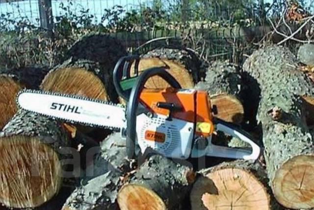 Спил деревьев, деревья, спилю деревья, вырубка деревьев. Автовышка своя
