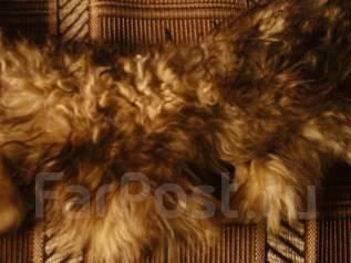Шубы из ламы. 48, 50, 52