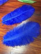 Синие перья, набор 5 штук