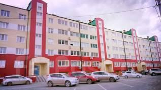 1-комнатная, улица Дзержинского 16б. Падь, агентство, 51 кв.м. Дом снаружи