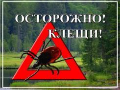Уничтожение клещей, комаров, жуков, осы, муравей 24/7