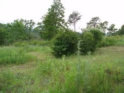 Продам земельный участок в р-не КПД. 1 338 кв.м., собственность, электричество, от агентства недвижимости (посредник). Фото участка