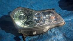 Фара. Infiniti M35, Y50 Infiniti M25 Nissan Fuga, PY50, PNY50, GY50, Y50 Двигатель VQ35DE