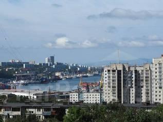 3-комнатная, улица Каплунова 8. 64, 71 микрорайоны, частное лицо, 67 кв.м. Вид из окна днём