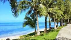 Вьетнам. Нячанг. Пляжный отдых. Вьетнам из Владивостока