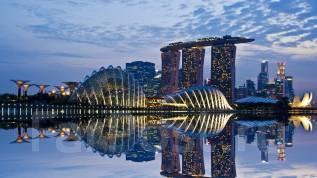 Туристическая виза в Сингапур