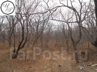 Продам земельный участок в районе пр-та 100-летия Владивостока ,159г. 2 495 кв.м., аренда, от агентства недвижимости (посредник)