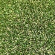 """Искусственная трава """"Осень"""" для ландшафтного дизайна"""