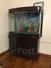 Продам аквариум 220 литров с тумбой и аксессуарами.