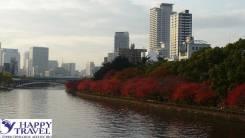 Япония. Осака. Экскурсионный тур. Тур в Осаку