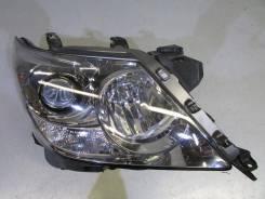 Лампа галогенная. Lexus LX570. Под заказ