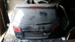Дверь боковая. Hyundai Santa Fe, CM Двигатель D4EBV