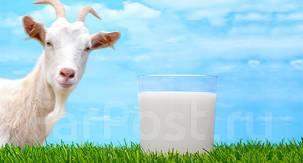 Молоко.