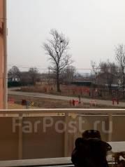 1-комнатная, улица Шишкина 13. 8 км, агентство, 45 кв.м. Вид из окна днём
