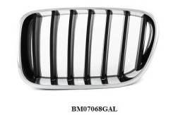 Решетка радиатора. BMW X3, F25