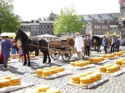 Сыр. Под заказ