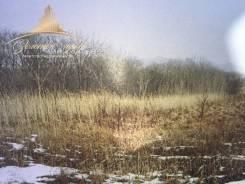 Земля 1,6 га в районе Шаморы. 16 000кв.м., аренда, электричество, от агентства недвижимости (посредник). Фото участка