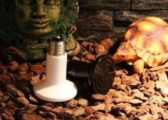 Лампы.