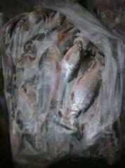 Продам рыбу верхогляд