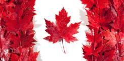 Оформление Канадской визы