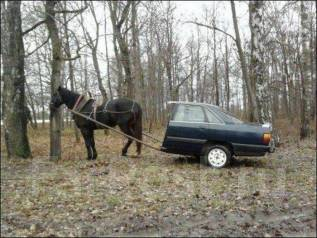 Куплю авто в любом состоянии по прим-краю