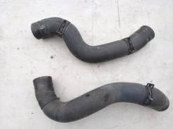 Патрубок радиатора. Nissan Bluebird Sylphy, KG11 Двигатели: MR20DE, MR20