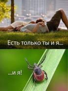 Средство от насекомых, Тараканов и клещей на 2000 кв. м Шашка Авиа