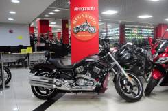 Harley-Davidson Night Rod VRSCD. 1 250 куб. см., исправен, птс, с пробегом
